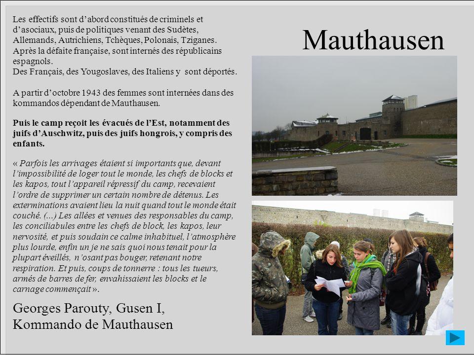 Mauthausen Georges Parouty, Gusen I, Kommando de Mauthausen