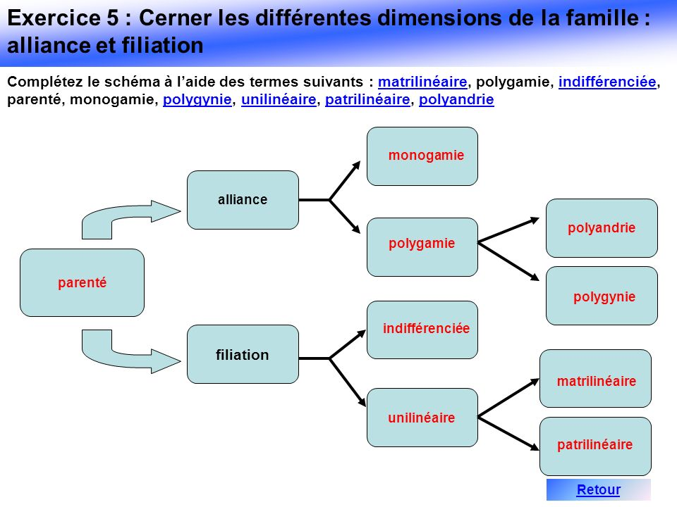 Exercice 5 : Cerner les différentes dimensions de la famille : alliance et filiation