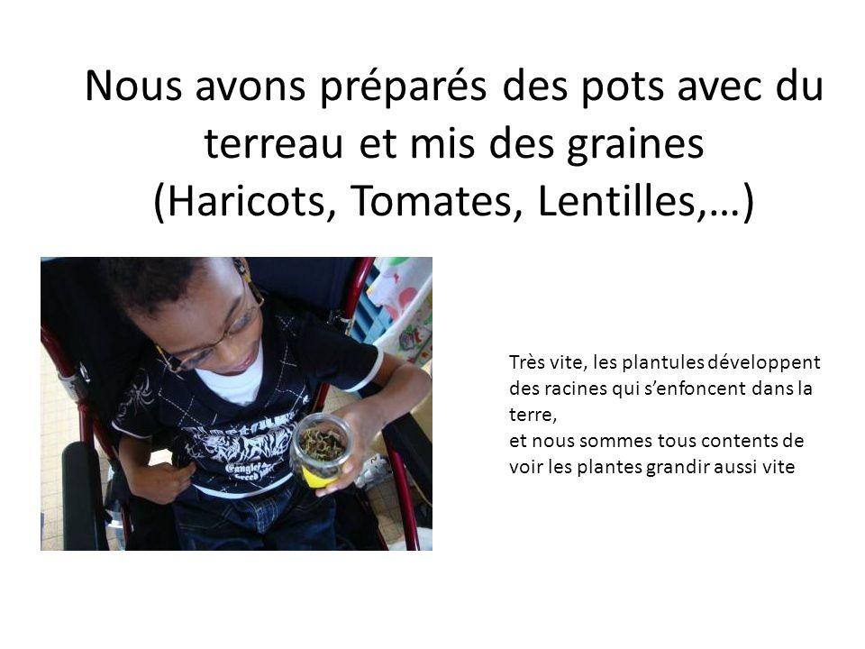 Nous avons préparés des pots avec du terreau et mis des graines (Haricots, Tomates, Lentilles,…)