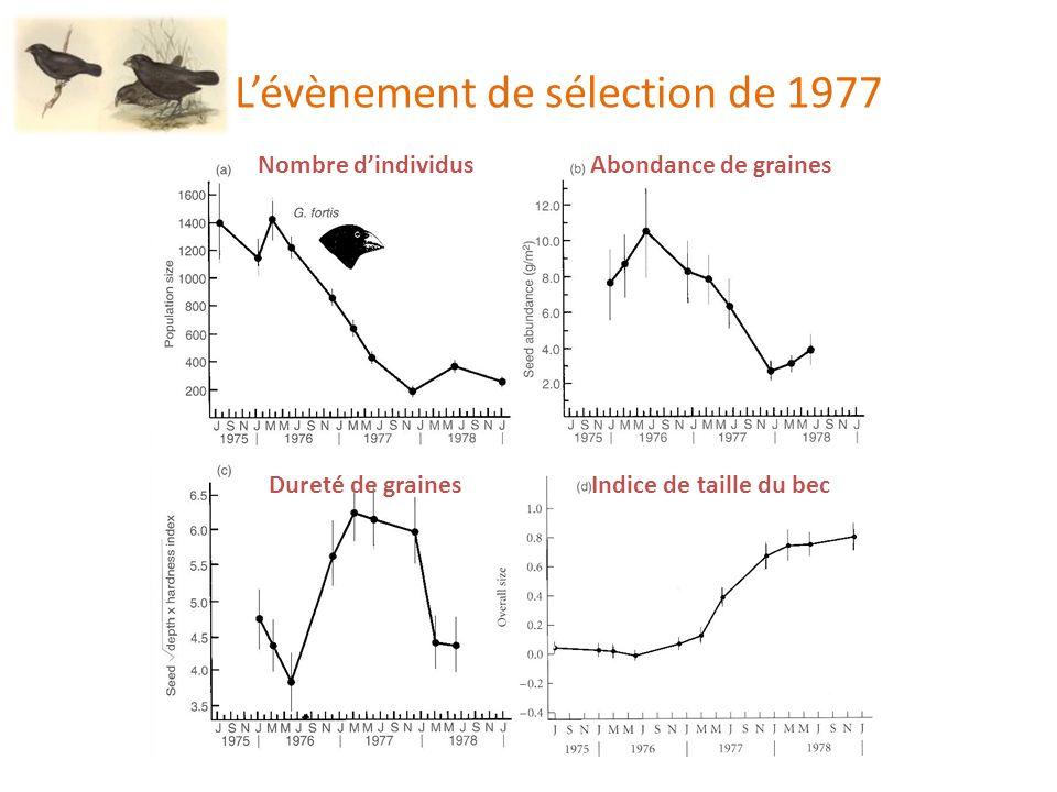 L'évènement de sélection de 1977