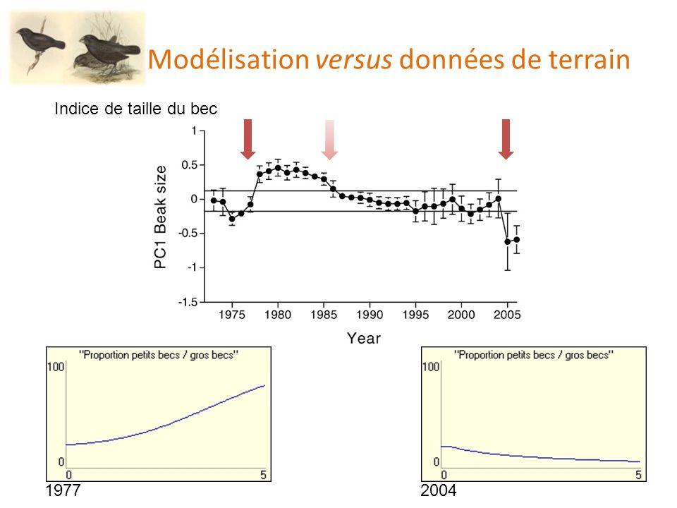 Modélisation versus données de terrain