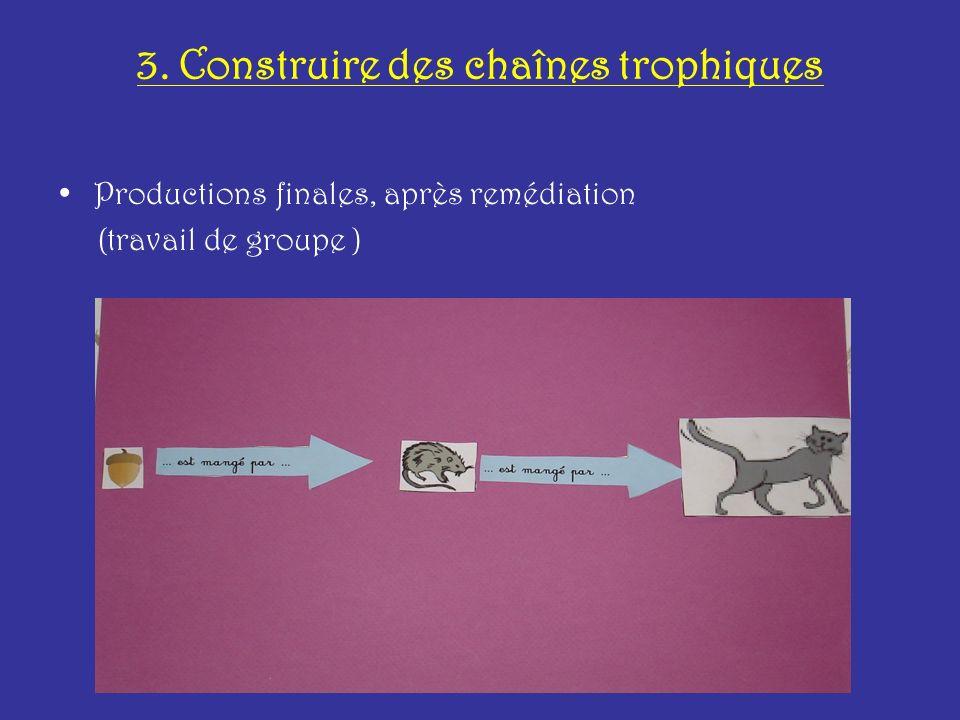 3. Construire des chaînes trophiques