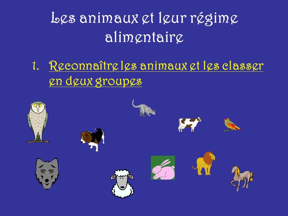 Les animaux et leur régime alimentaire