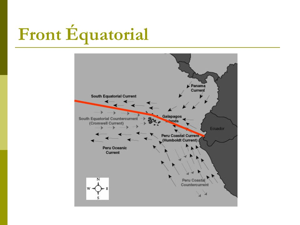 Front Équatorial
