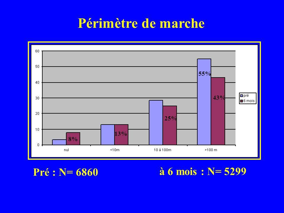 Périmètre de marche Pré : N= 6860 à 6 mois : N= 5299 55% 43% 25% 13%
