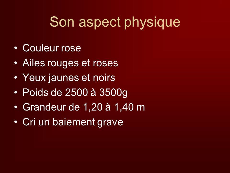 Son aspect physique Couleur rose Ailes rouges et roses