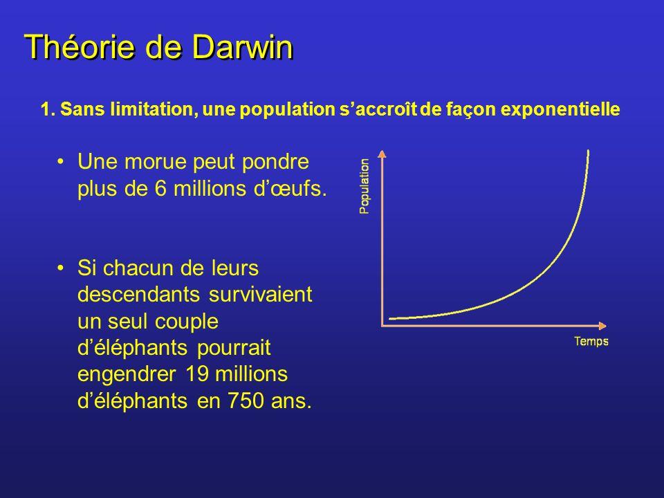 Théorie de Darwin Une morue peut pondre plus de 6 millions d'œufs.