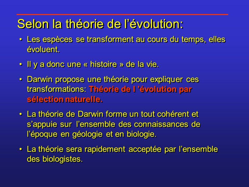 Selon la théorie de l'évolution: