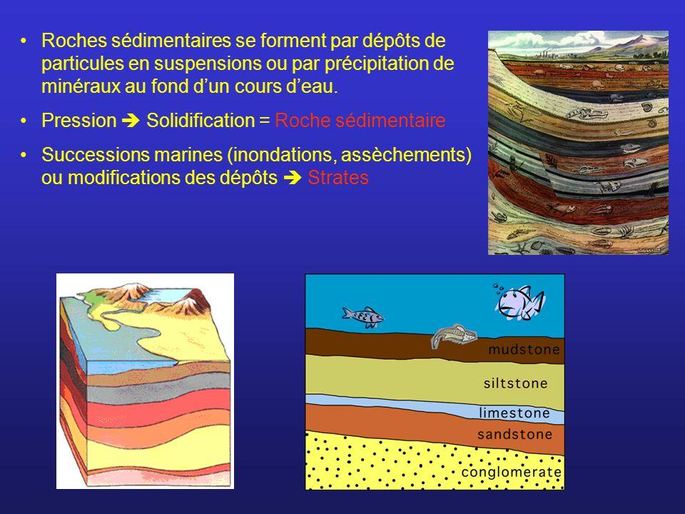 Roches sédimentaires se forment par dépôts de particules en suspensions ou par précipitation de minéraux au fond d'un cours d'eau.