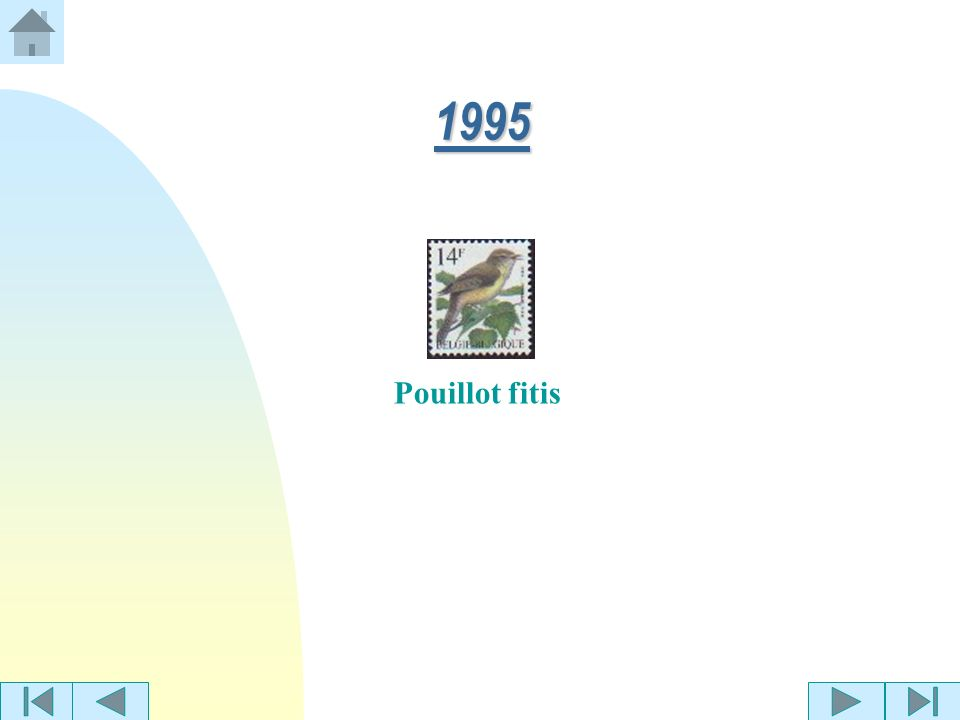 1995 Pouillot fitis