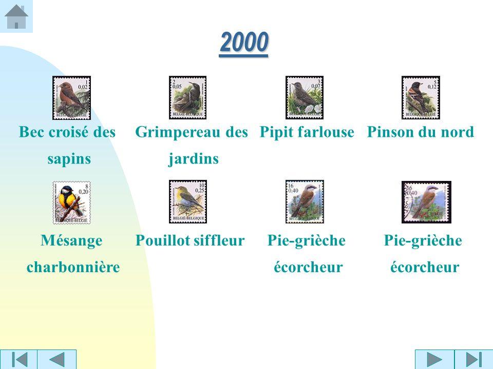 2000 Bec croisé des sapins Grimpereau des jardins Pipit farlouse