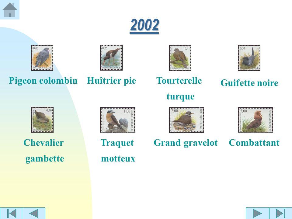 2002 Pigeon colombin Huîtrier pie Tourterelle turque Guifette noire