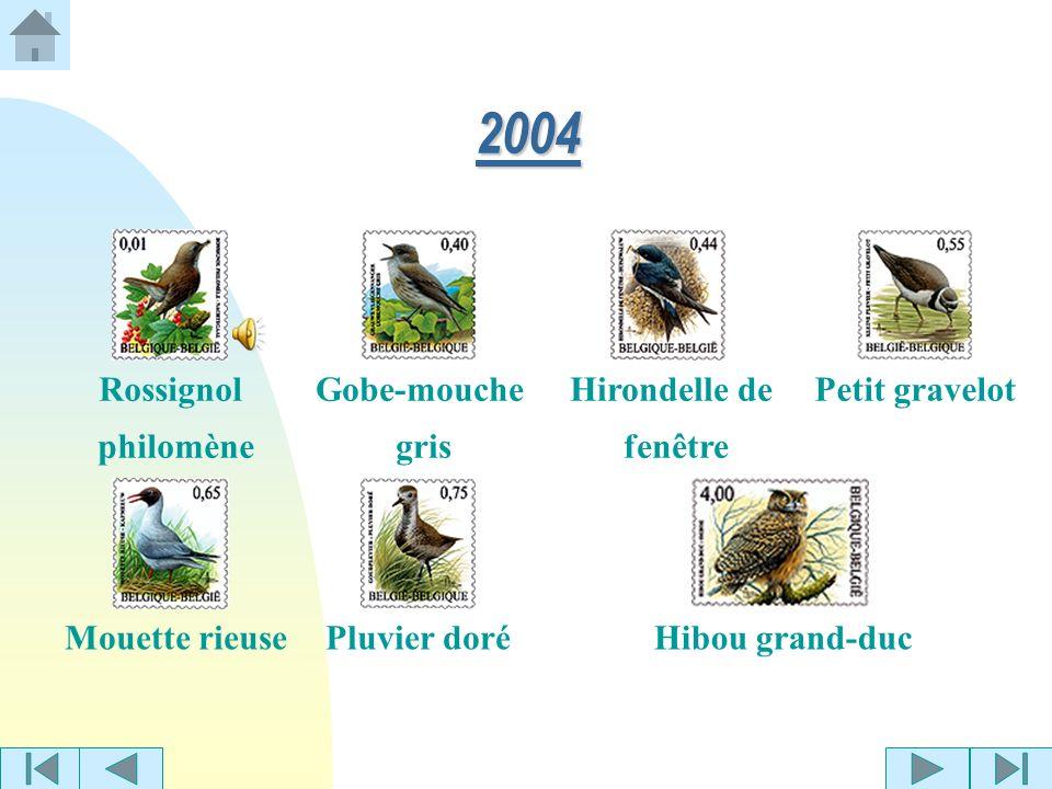 2004 Rossignol philomène Gobe-mouche gris Hirondelle de fenêtre