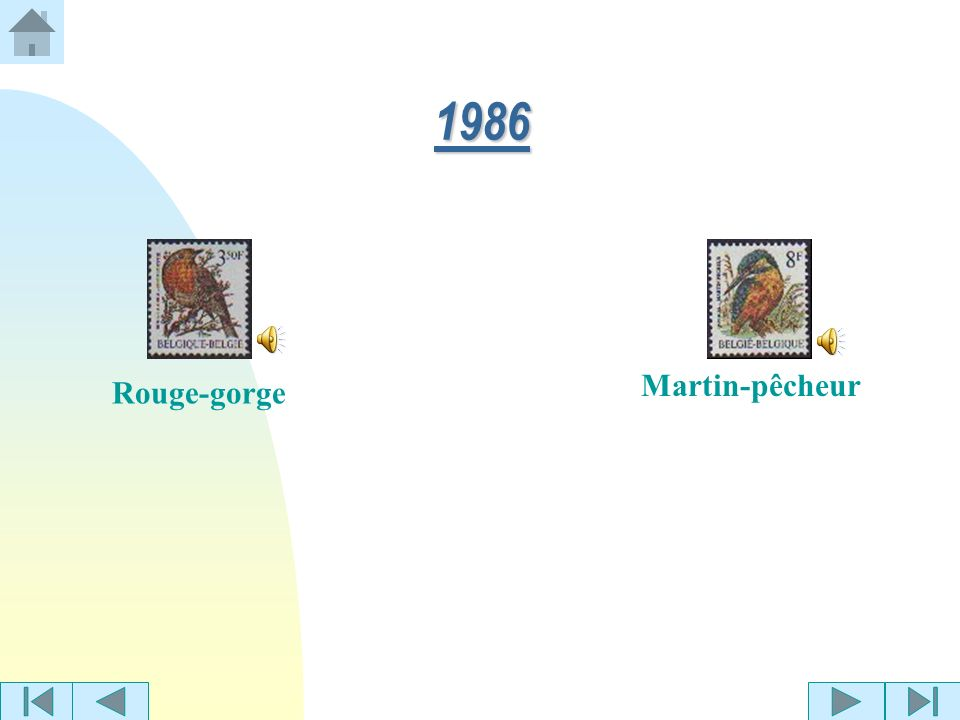1986 Martin-pêcheur Rouge-gorge