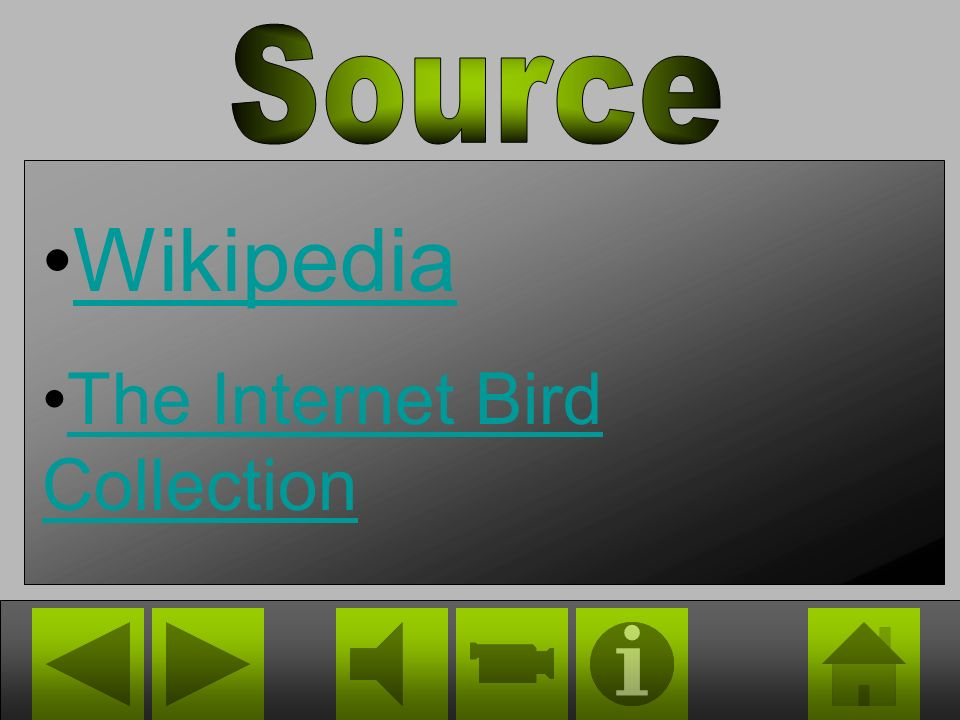 Source Wikipedia The Internet Bird Collection