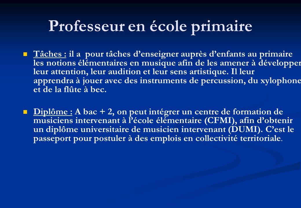 Professeur en école primaire