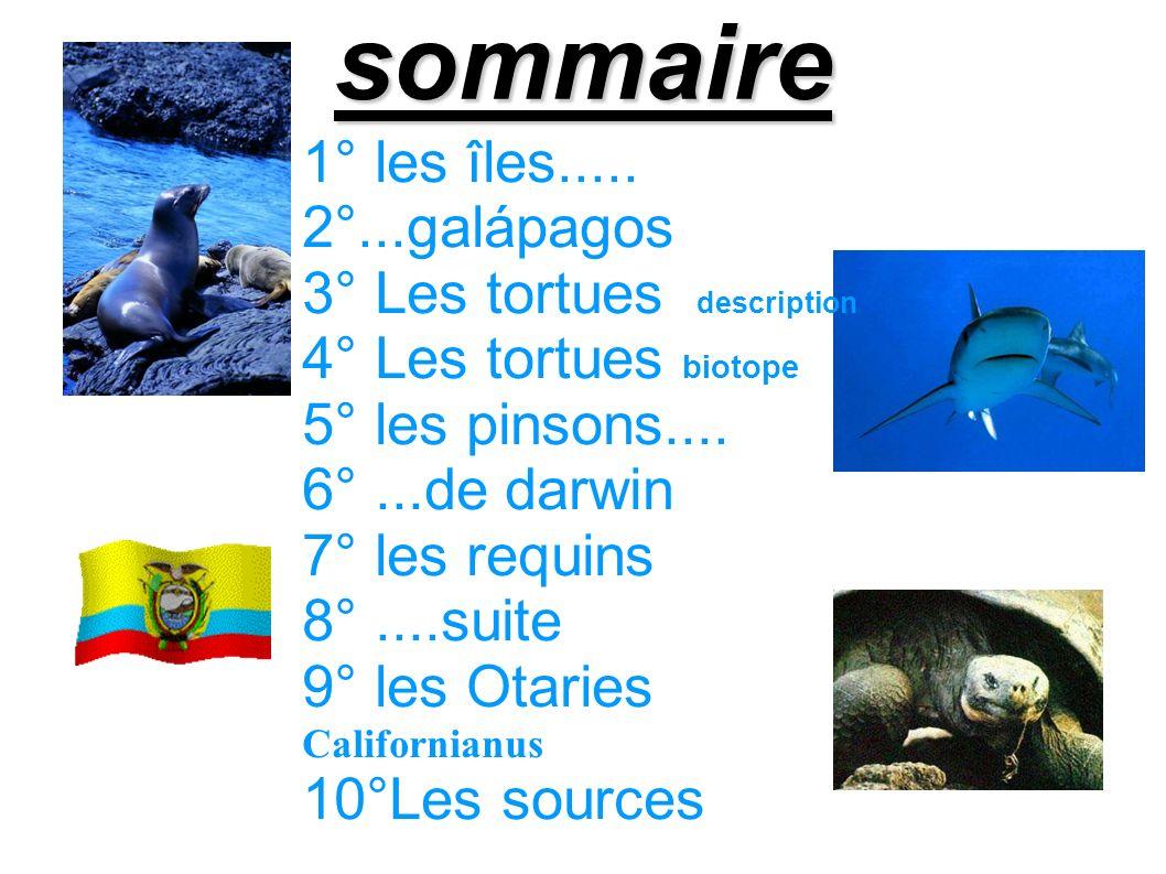 sommaire 1° les îles..... 2°...galápagos 3° Les tortues description