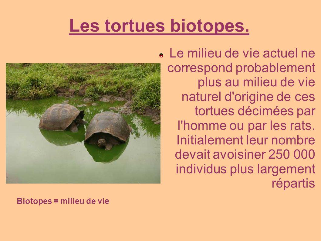 Biotopes = milieu de vie