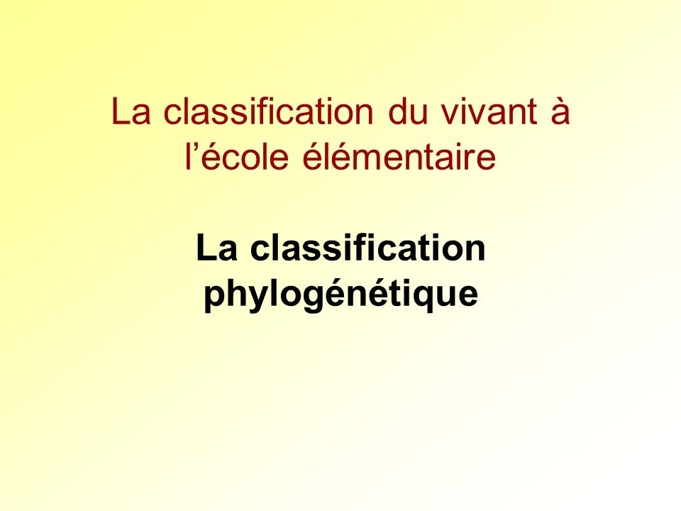 La classification du vivant à l'école élémentaire La classification phylogénétique
