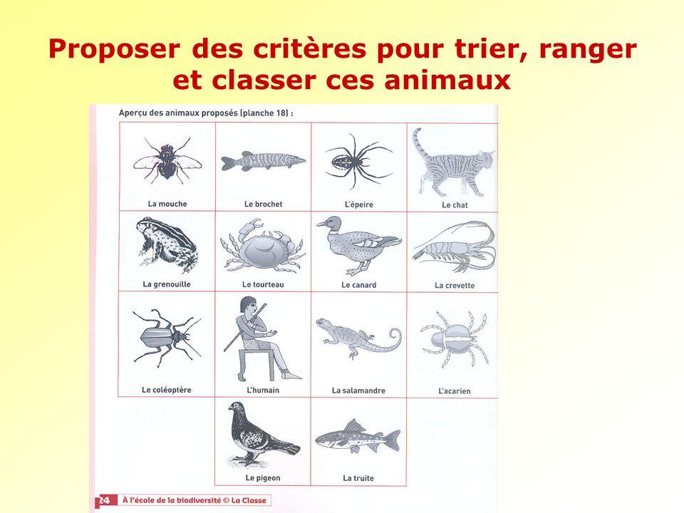Proposer des critères pour trier, ranger et classer ces animaux