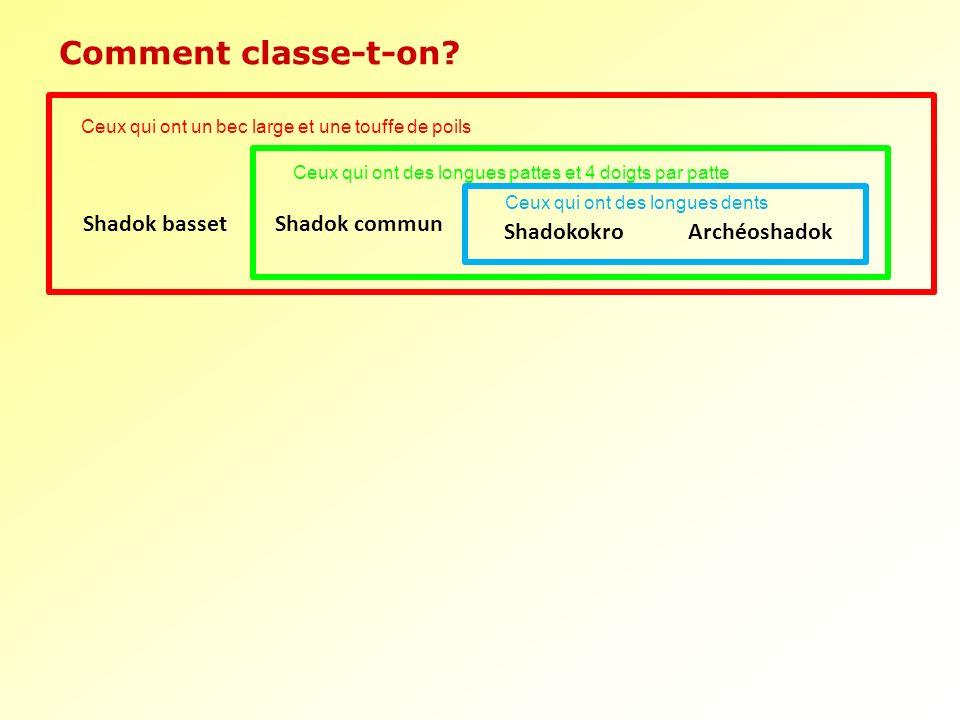 Shadokokro Archéoshadok