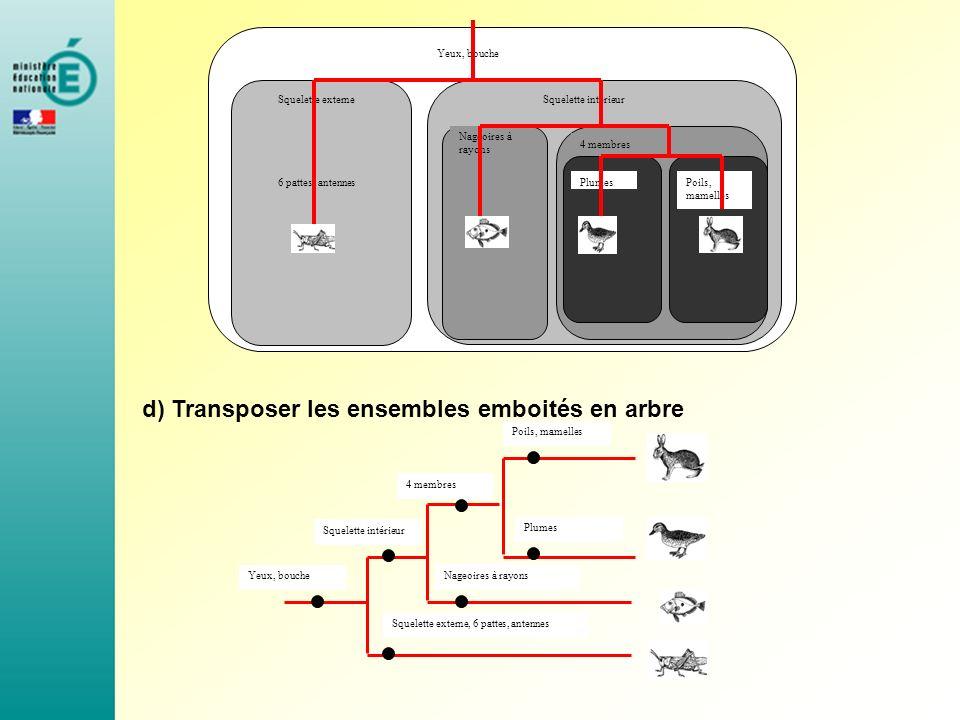 d) Transposer les ensembles emboités en arbre