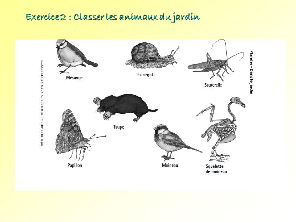 Exercice 2 : Classer les animaux du jardin