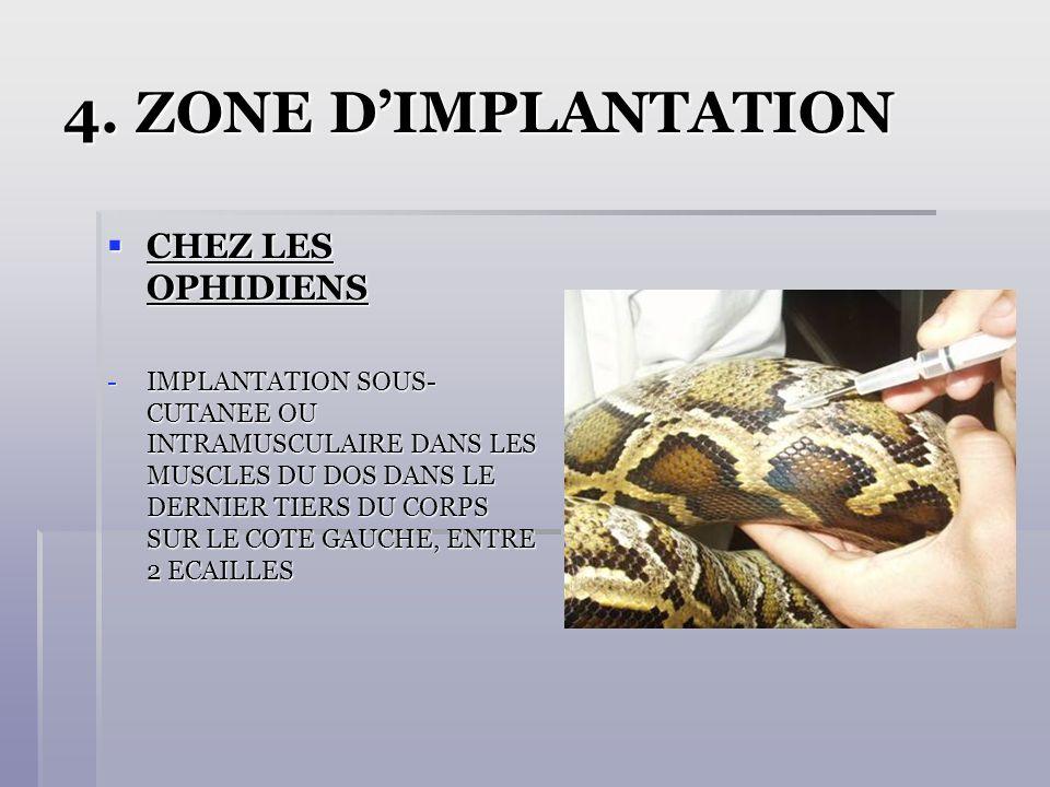 4. ZONE D'IMPLANTATION CHEZ LES OPHIDIENS