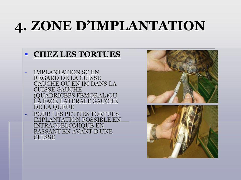 4. ZONE D'IMPLANTATION CHEZ LES TORTUES