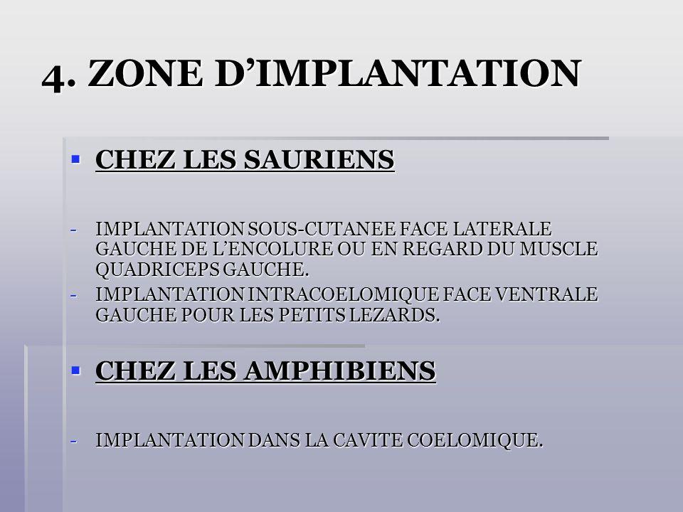 4. ZONE D'IMPLANTATION CHEZ LES SAURIENS CHEZ LES AMPHIBIENS