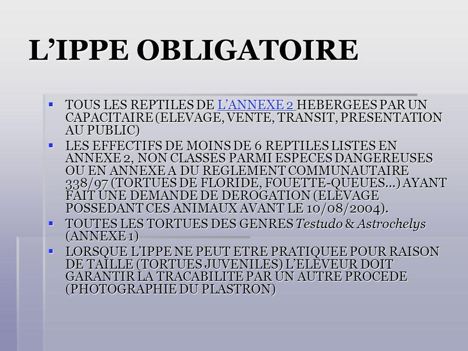 L'IPPE OBLIGATOIRE TOUS LES REPTILES DE L'ANNEXE 2 HEBERGEES PAR UN CAPACITAIRE (ELEVAGE, VENTE, TRANSIT, PRESENTATION AU PUBLIC)