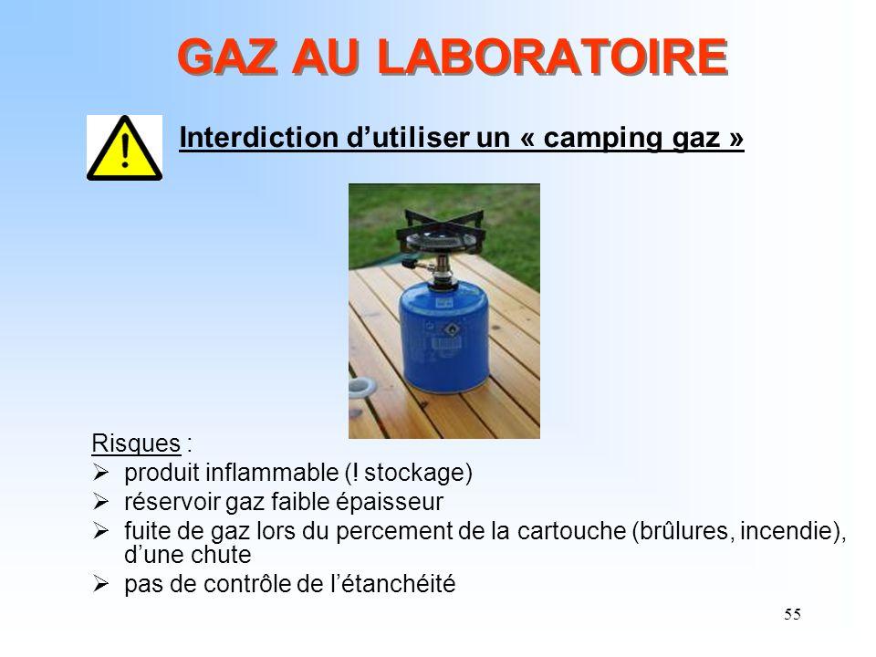 GAZ AU LABORATOIRE Risques : produit inflammable (! stockage)