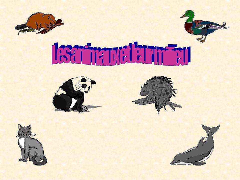 Les animaux et leur milieu