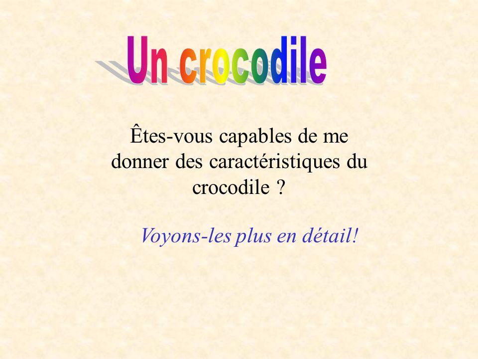 Un crocodile Êtes-vous capables de me donner des caractéristiques du crocodile .