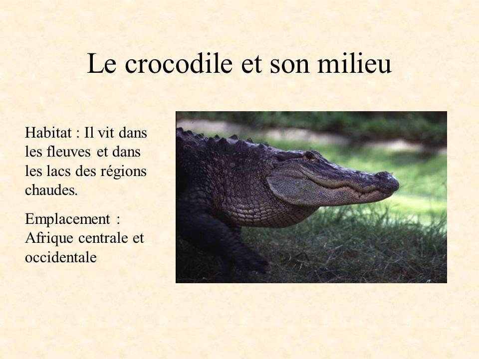 Le crocodile et son milieu