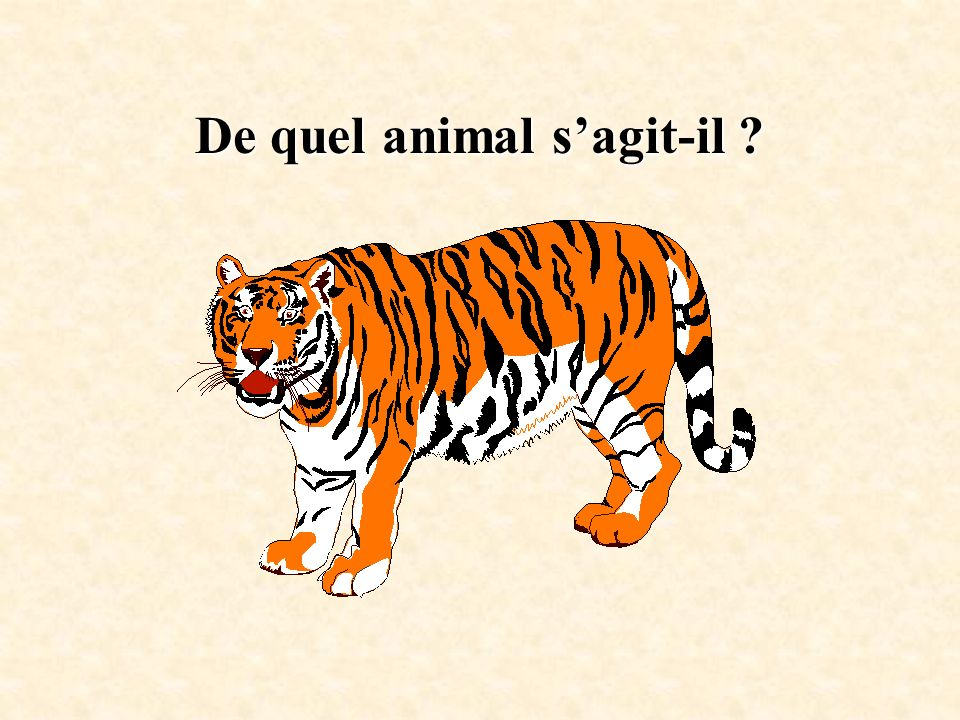 De quel animal s'agit-il
