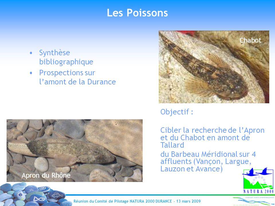 Les Poissons Synthèse bibliographique