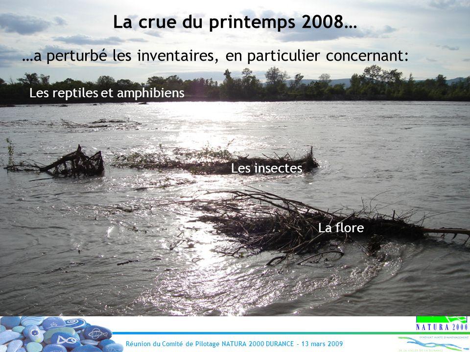 La crue du printemps 2008… …a perturbé les inventaires, en particulier concernant: Les reptiles et amphibiens.