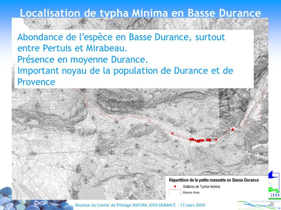 Localisation de typha Minima en Basse Durance