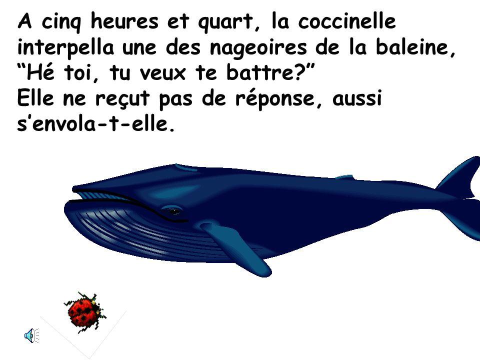 A cinq heures et quart, la coccinelle interpella une des nageoires de la baleine, Hé toi, tu veux te battre Elle ne reçut pas de réponse, aussi s'envola-t-elle.