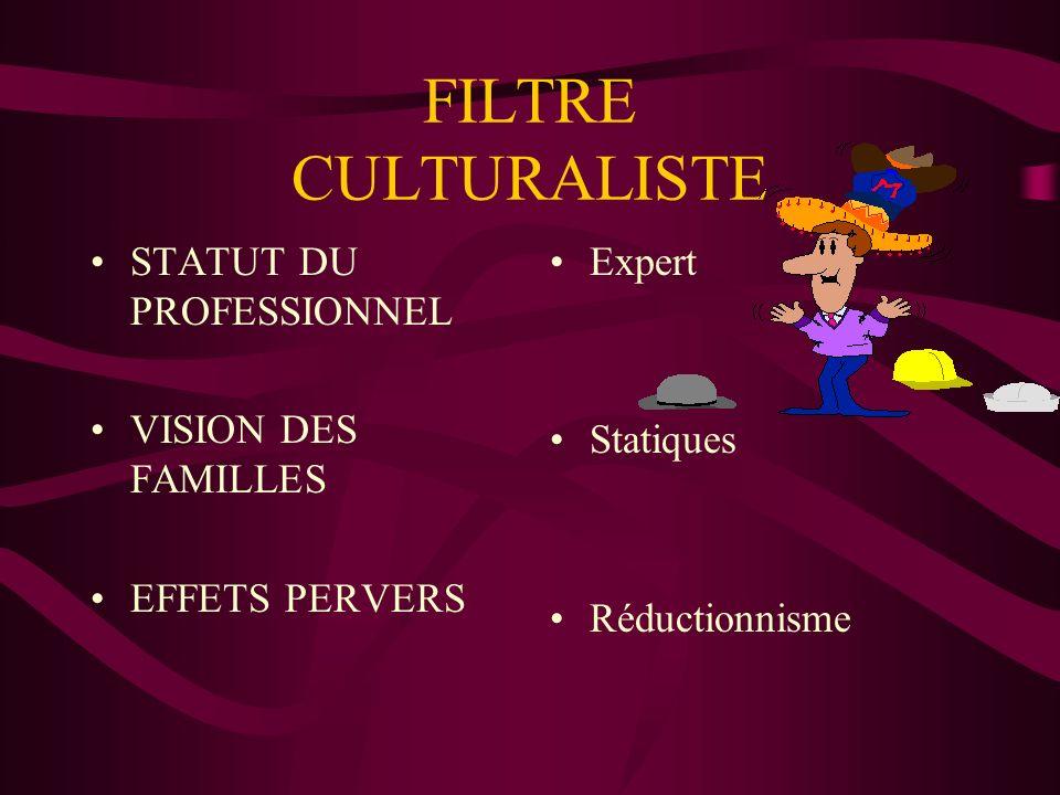 FILTRE CULTURALISTE STATUT DU PROFESSIONNEL VISION DES FAMILLES