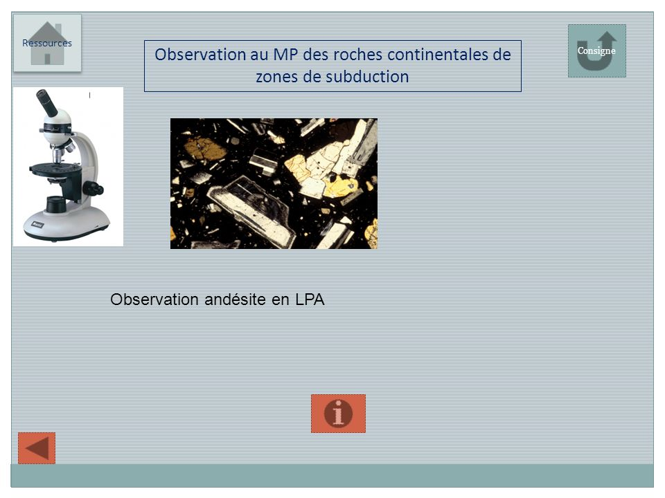 Observation au MP des roches continentales de zones de subduction