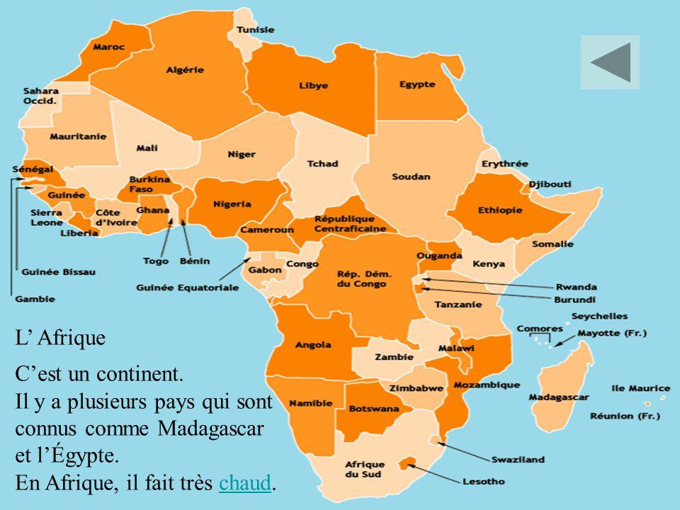 L' Afrique C'est un continent. Il y a plusieurs pays qui sont. connus comme Madagascar. et l'Égypte.