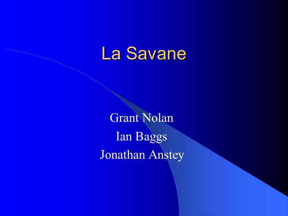 Grant Nolan Ian Baggs Jonathan Anstey