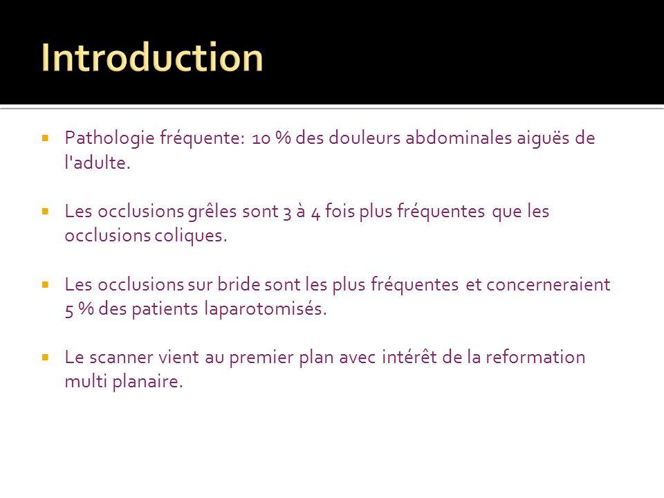 Introduction Pathologie fréquente: 10 % des douleurs abdominales aiguës de l adulte.