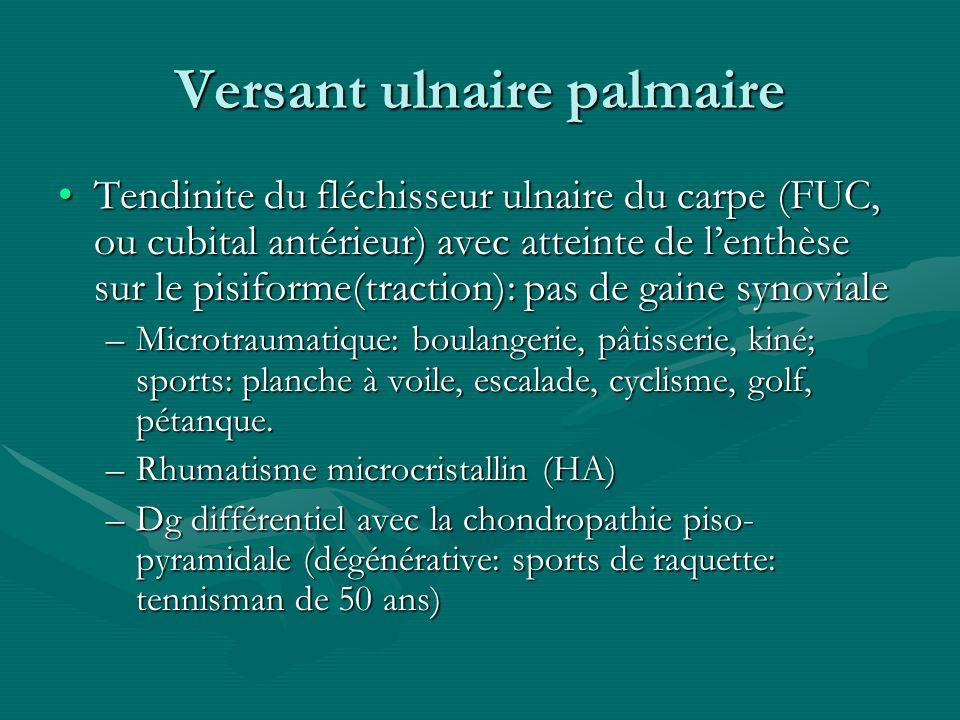 Versant ulnaire palmaire