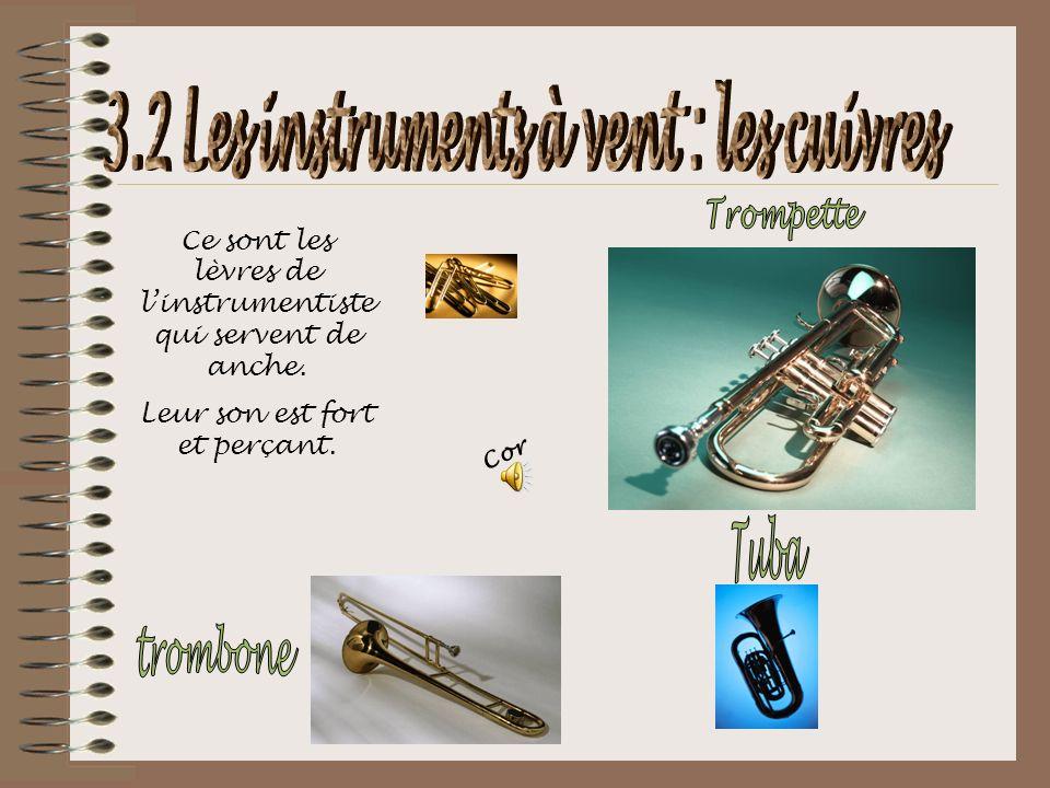 3.2 Les instruments à vent : les cuivres