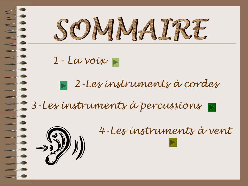 SOMMAIRE 1- La voix 2-Les instruments à cordes