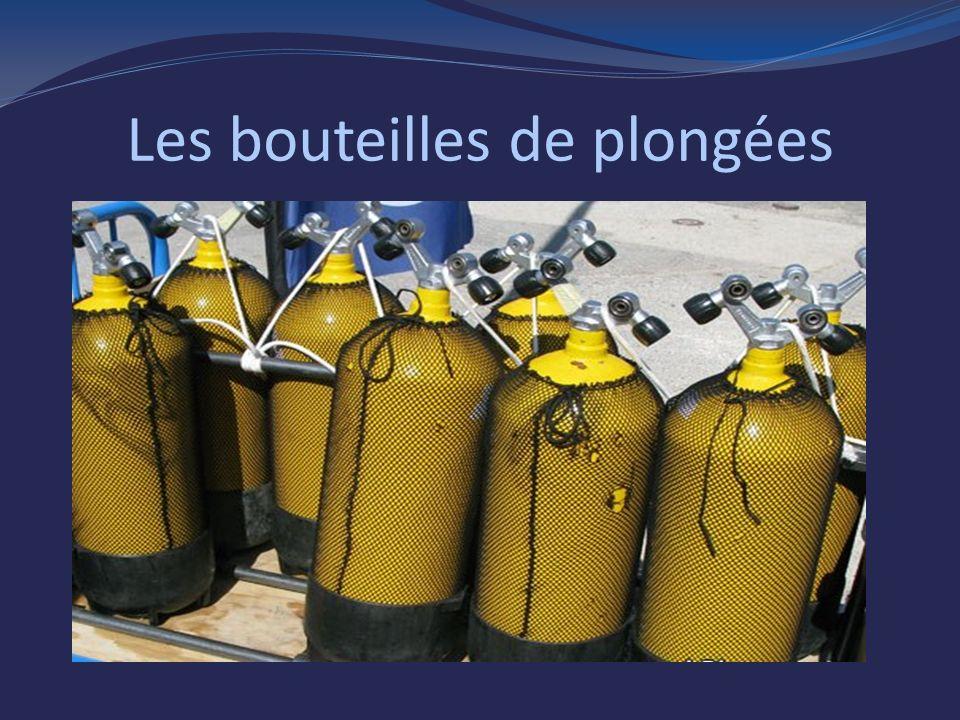 Les bouteilles de plongées