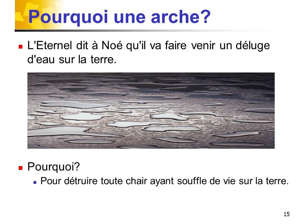 Pourquoi une arche L Eternel dit à Noé qu il va faire venir un déluge d eau sur la terre. Pourquoi